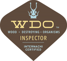 Winchester Termite Inspection